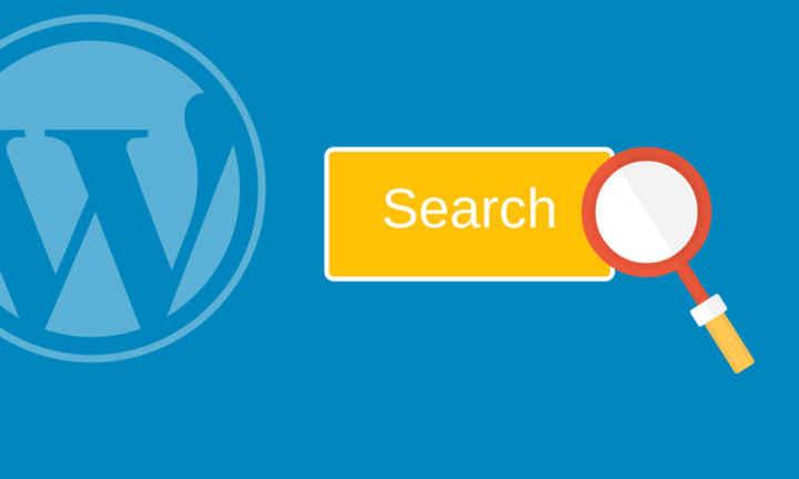 Поиск по сайту на Wordpress